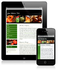 Mobile Version or Responsive Design